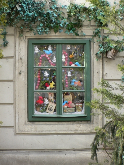 Winter Window in Vienna